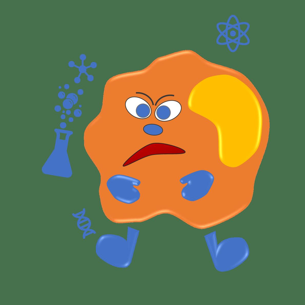 immunologie allergologie Allergologie paiano - CIAO
